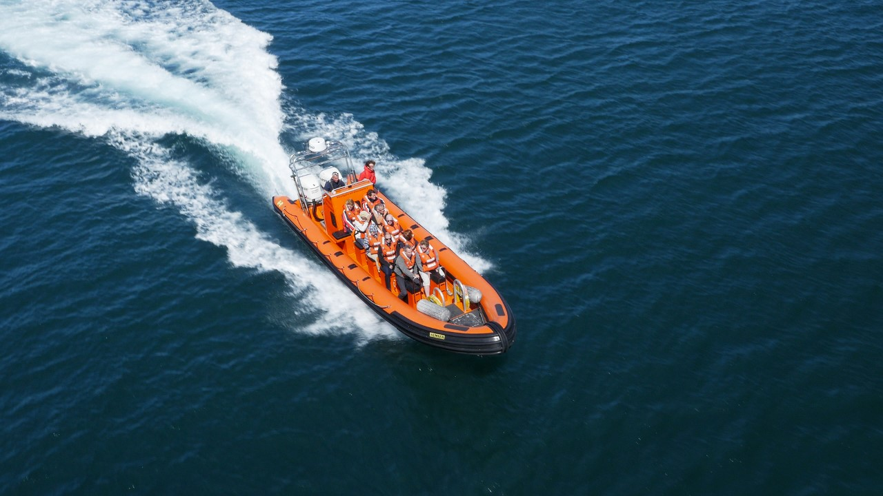 Saundersfoot boat trips
